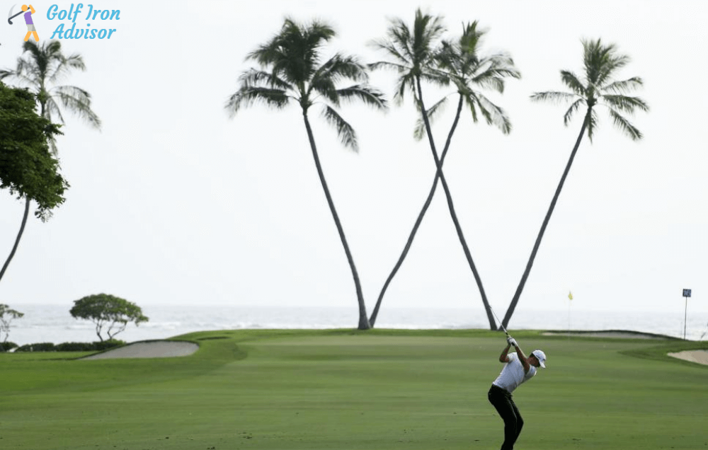 Sony Open Prize Money