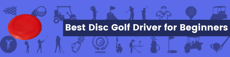 Best Disc Golf Driver for Beginners